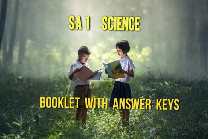 AP SA 1 Science Paper Answer Keys released, Download OMR Sheet Solutions