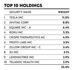 ARKK Top 10 Holdings