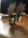New design of the Sneaky Pete fly for Smallmouth Bass