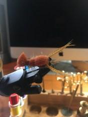 Near nuff Crayfish