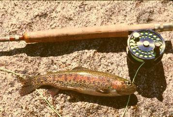 Types_of_California_Trout