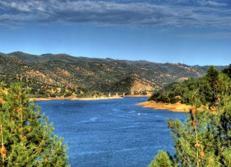 Lake Don Pedro Fishing Report