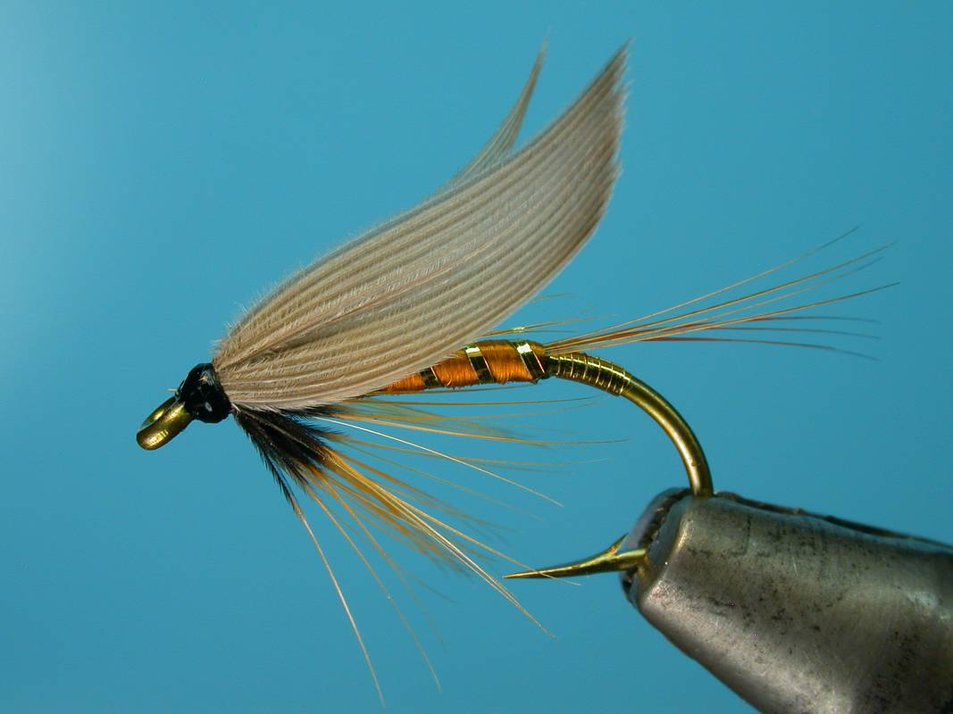 A wet fly quick introduction the fishing advice for Wet fly fishing