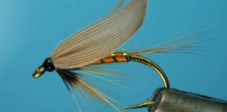 Wet Fly A Quick Guide