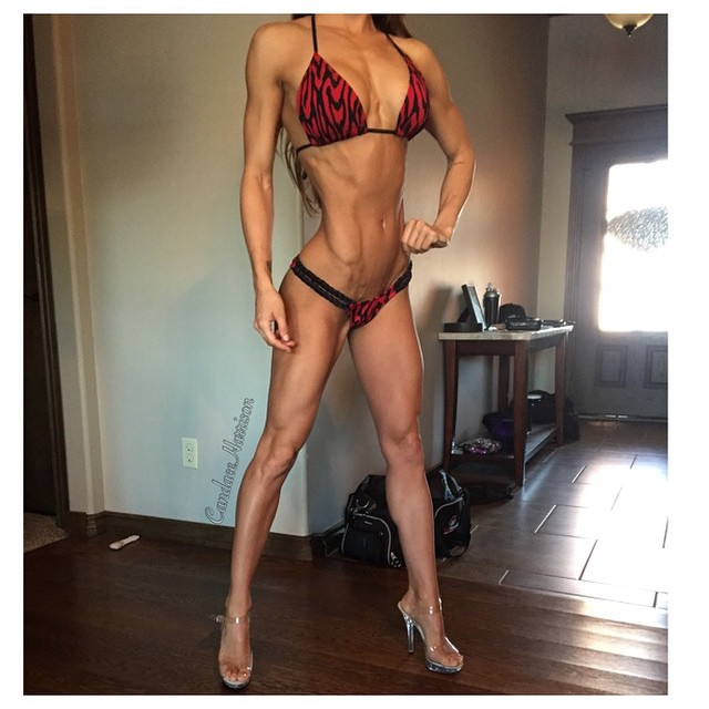 2x Top 3 NPC National Finalist candace_harrison