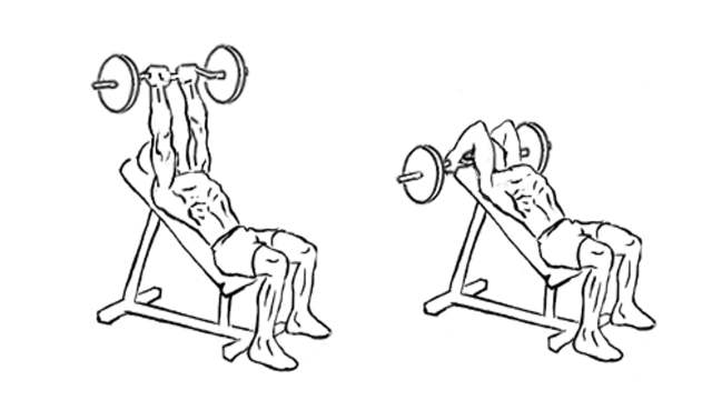 Barbell Incline Triceps Extension
