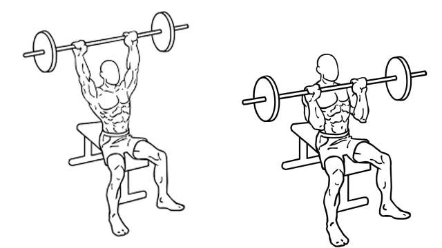 Seated Barbell military shoulder press, is a free weights exercise which gives major benefits to your shoulders.
