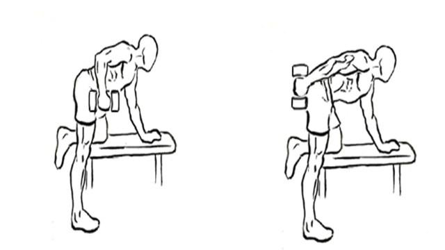 Triceps Kickback (Free weights)