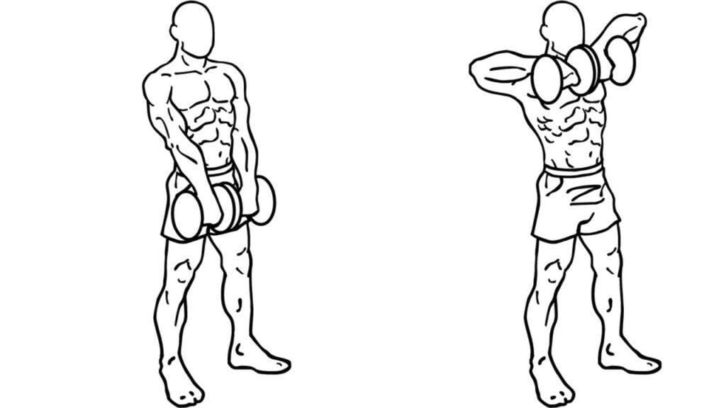 Dumbbell Shoulder workouts