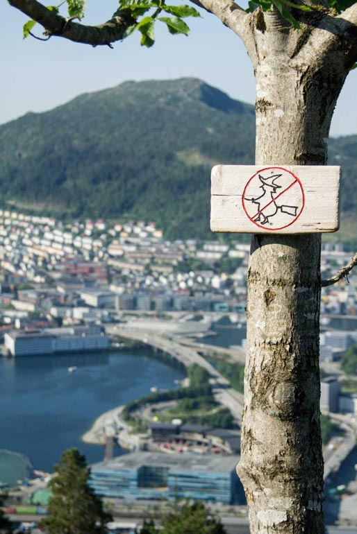 watch out for the witched sign at mount floyen bergen