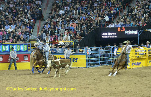 Area Cowboys Win More Than 13k In Nevada Rodeo The