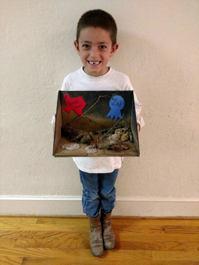 Mmisd Shows Off Texas State Symbols Projects The Flash