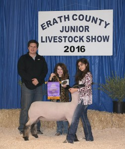 The grand champion from the medium wool light heavy weight class of lamb was shown by Kaitlin Chabot and purchased by Stephenville Evening Lions Club for $3,500.