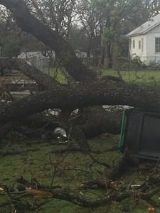 March 8 Storm Damage 39