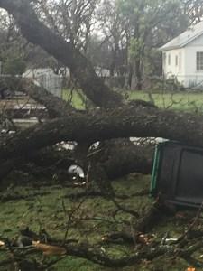March 8 Storm Damage 43