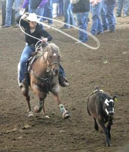 THSRA Reg III Rodeo 12