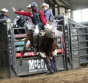 THSRA Reg III Rodeo 23