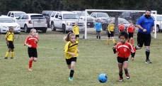 little-league-soccer-19