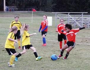 little-league-soccer-21