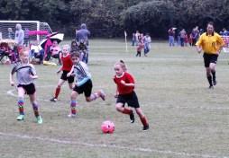 little-league-soccer-8