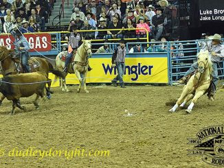 Luke Brown and Jake Long won Round 6, strengthening their hold on the top of the team roping heading and heeling world standings. || Photo courtesy DUDLEY BARKER/DudleyDoRight.com