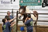 TREAT rodeo IMG_7959