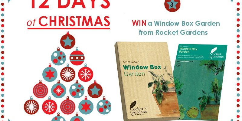 WIN a Window Box Garden – 12 Days of Christmas Competition Day 3
