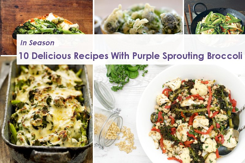 10 Delicious Recipes With Purple Sprouting Broccoli Https Theflexitarian Co Uk