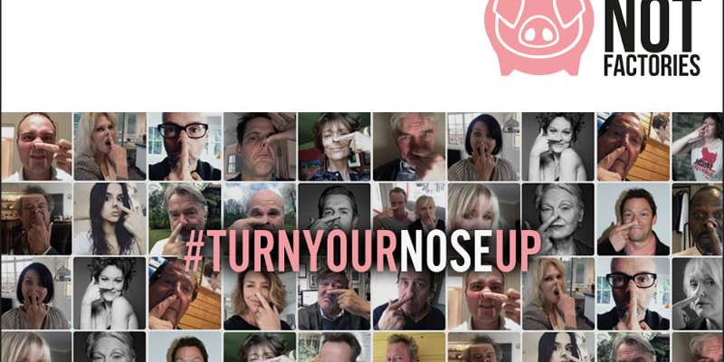 #TurnYourNoseUp at Pig Factories