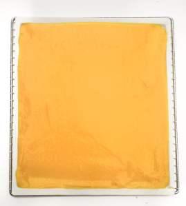 Fruit Leather Step BioChef Arizona Sol Food Dehydrator © 2019 -