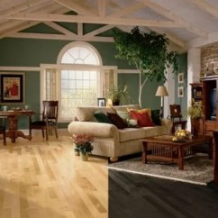 Modern Living Room With Dark Wood Floors Paint Colors For And Dining Vs Light Pros Cons The Flooring Girl Hardwood Maple