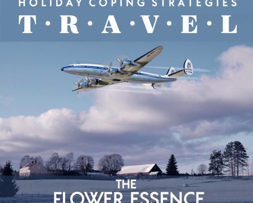 FEP13 Holiday Travel & Social Anxiety [Holiday Coping Strategies]