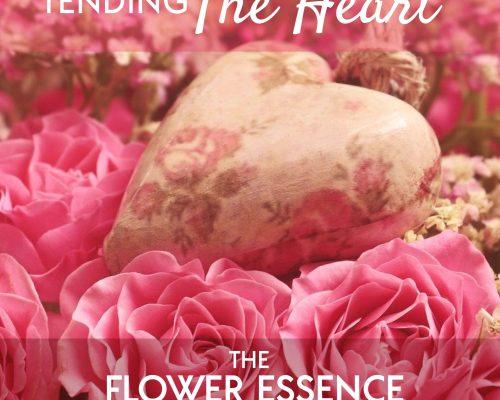 FEP17 Tending The Heart