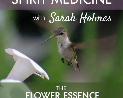 FEP22 Spirit Medicine with Sarah Holmes