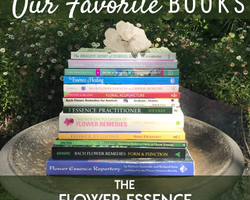 FEP25 Our Favorite Books