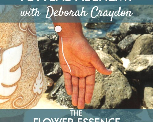 FEP24 Topical Alchemy with Deborah Craydon