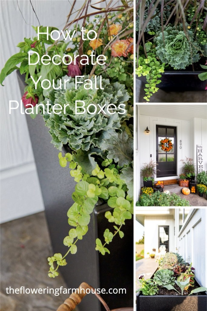decorate your fall planter box