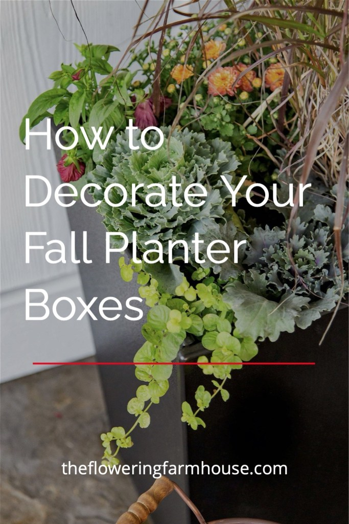 decorate your planter box for fall