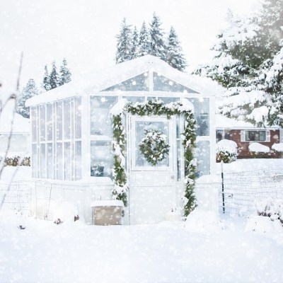 A Holiday Greenhouse