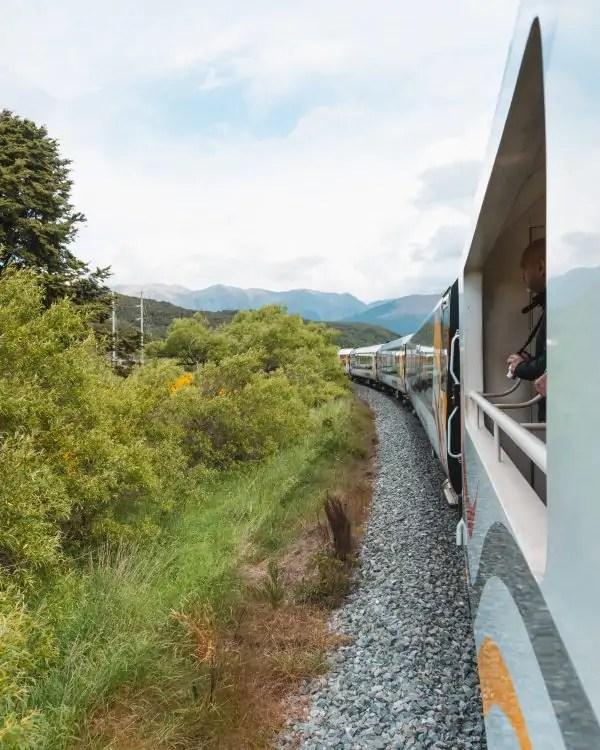 TranzAlpine Train Journey: Everything You Need to Know