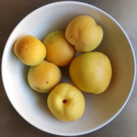 פירות יער - לאכול את כתר הקוצים. או את פרי הלוטוס.
