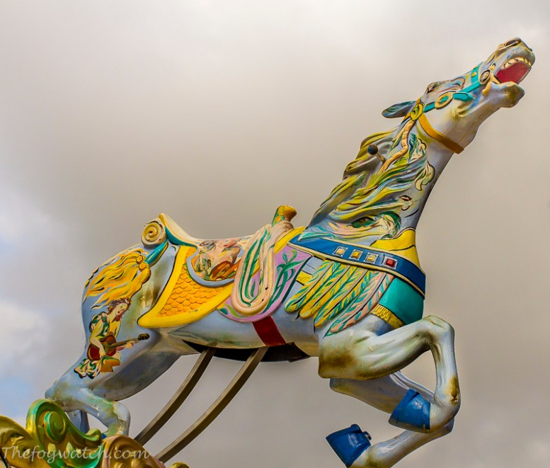 Carousel - horse