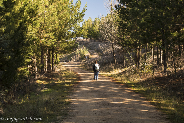 Walking in solitude