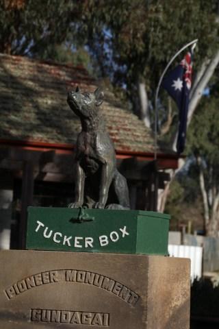Dog on the Tucker Box