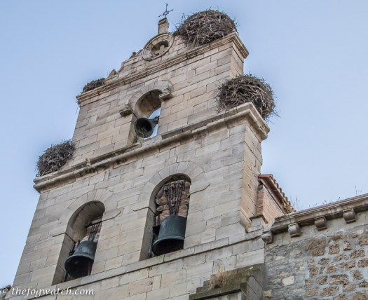 Dragon nests on the church