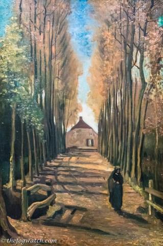 Avenue of poplars in Autumn