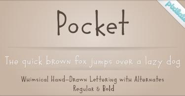 Pocket Px [2 Fonts]