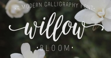 Willow Bloom [1 Font]
