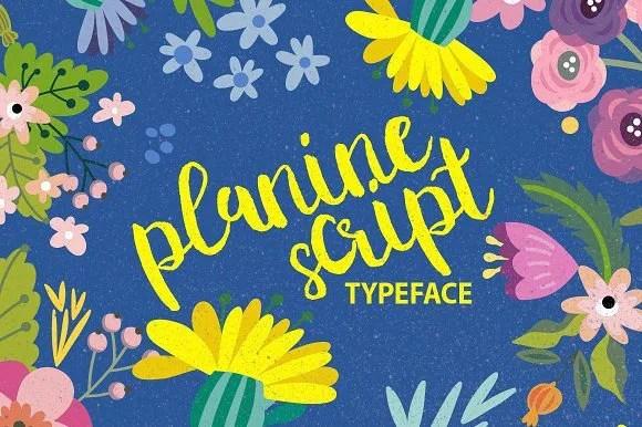 Planine Script [1 Font] | The Fonts Master
