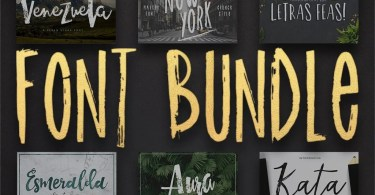 12 Fonts Bundle [12 Fonts]